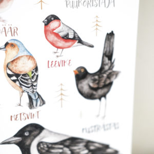 Linnud postril