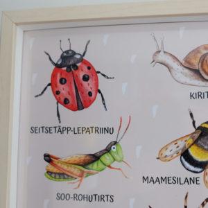 Putukatega poster raamis