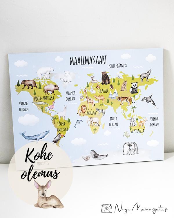 Maailmakaart, maakaart