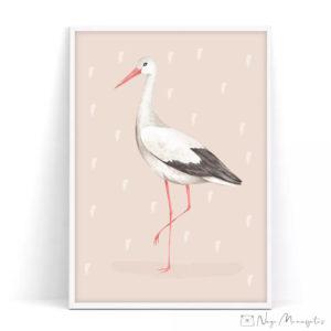 Valge-toonekurg poster lastele, Eesti linnud