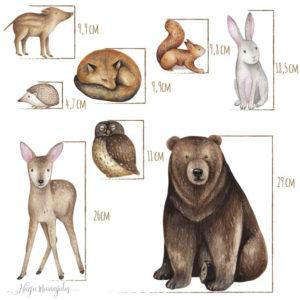 Metsloomadega seinakleepsude, seinakleebiste komplekt lastele