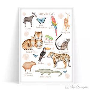 Vihmametsa, džungli teemaline poster lastele, seinapilt lastetuppa, konn, liblikas, ahv, tiiger, tuukan