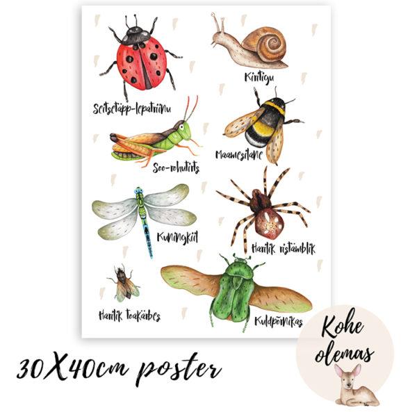 Putukatega poster