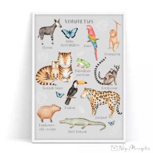 Vihmametsa, džungli teemaline poster lastele, seinapilt lastetuppa, konn, liblikas, ahv, tiiferm tuukan