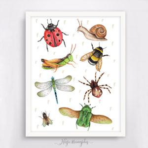Putukad poster, Eesti putukad seinapilt, dekoratsioon laste tuppa, sisustus