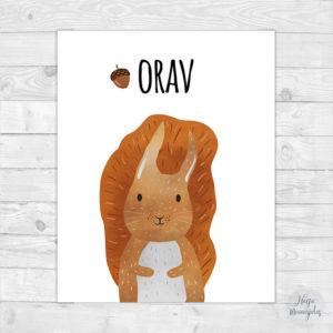 Orav, poster seinale lastetuppa