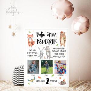Sünnipäeva poster lapsele, pildistamiseks, sünnipäev, kingitus