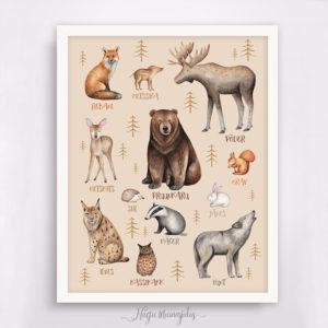 Metsloomad poster lastetuppa, seinapilt, kingiidee