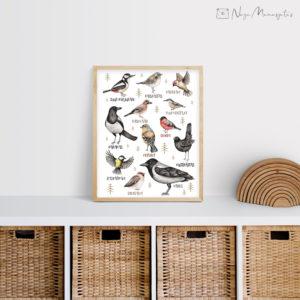 Eesti lindudega poster lastele, dekoratsioon laste tuppa, linnud
