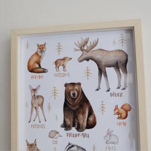 Metsloomadega poster raamis