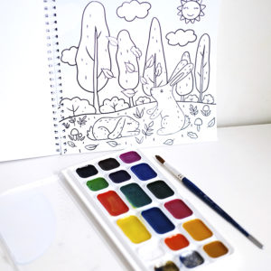 Sügise värviraamat