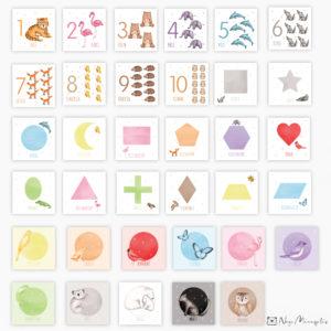 Loodusuurija numbri, kujundi ja värvide kaardid, õppekaardid